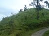 bukitcinta1