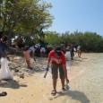 Minggu, 9 Juni 2012 Pulau Menjangan beserta lingkungannya termasuk di dalam kawasan Taman Nasional Bali Barat. Kawasan ini memiliki areal […]