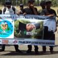 """Jargon Bali Clean and Green hanya wacana yang selalu dikampanyekan tanpa adanya upaya nyata untuk menjaga lingkungan hidup di Bali."" […]"