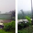 Development at Lake Buyan goes on without permits Claudia Sardi , The Jakarta Post , Buleleng | Sat, 02/07/2009 1:11 […]