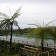 Bagi yang hobby mancing dapat memanfaatkan kolam pancing ikan air tawar. Price : sewa alat pancing Rp. 15.000,- (ikan dihitung/Kg) […]