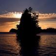 Where is the Lokasi Pulau Kadidiri secara administratif ada di Teluk Tomini, Kabupaten Tojo Una-Una, Sulawesi Tengah dan berada di […]